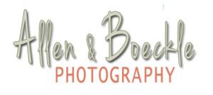 allen_logo